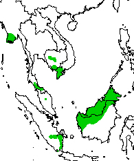 Map of south east Asia showing species found in one locality each in Cambodia, Thailand and Sumatra, and the extreme south of Viet Nam
